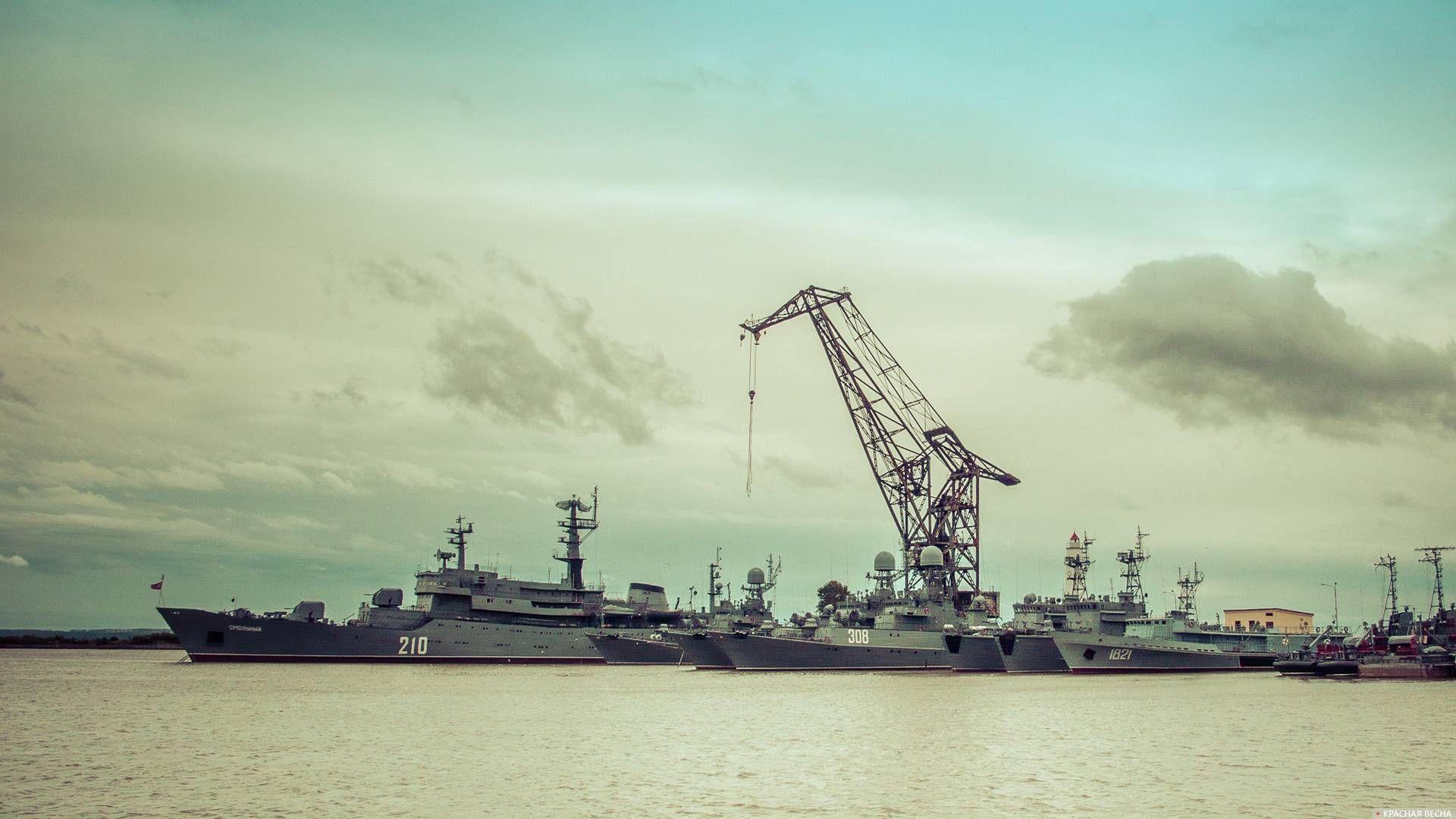 Петровская гавань. Кронштадт