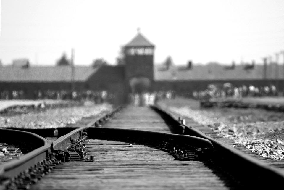 Освенцим [RonPorter (cc)]