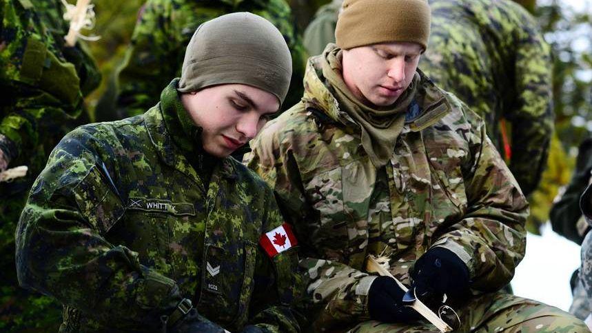 Салдаты армии Канады