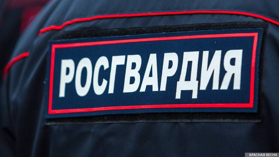В совете потруду Петербурга проходят обыски из-за подозрения вмошенничестве