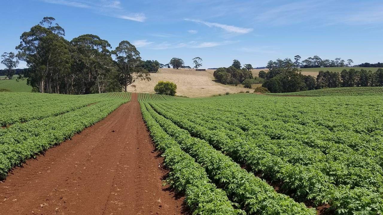 Прикольные надписью, картинки о земледелии