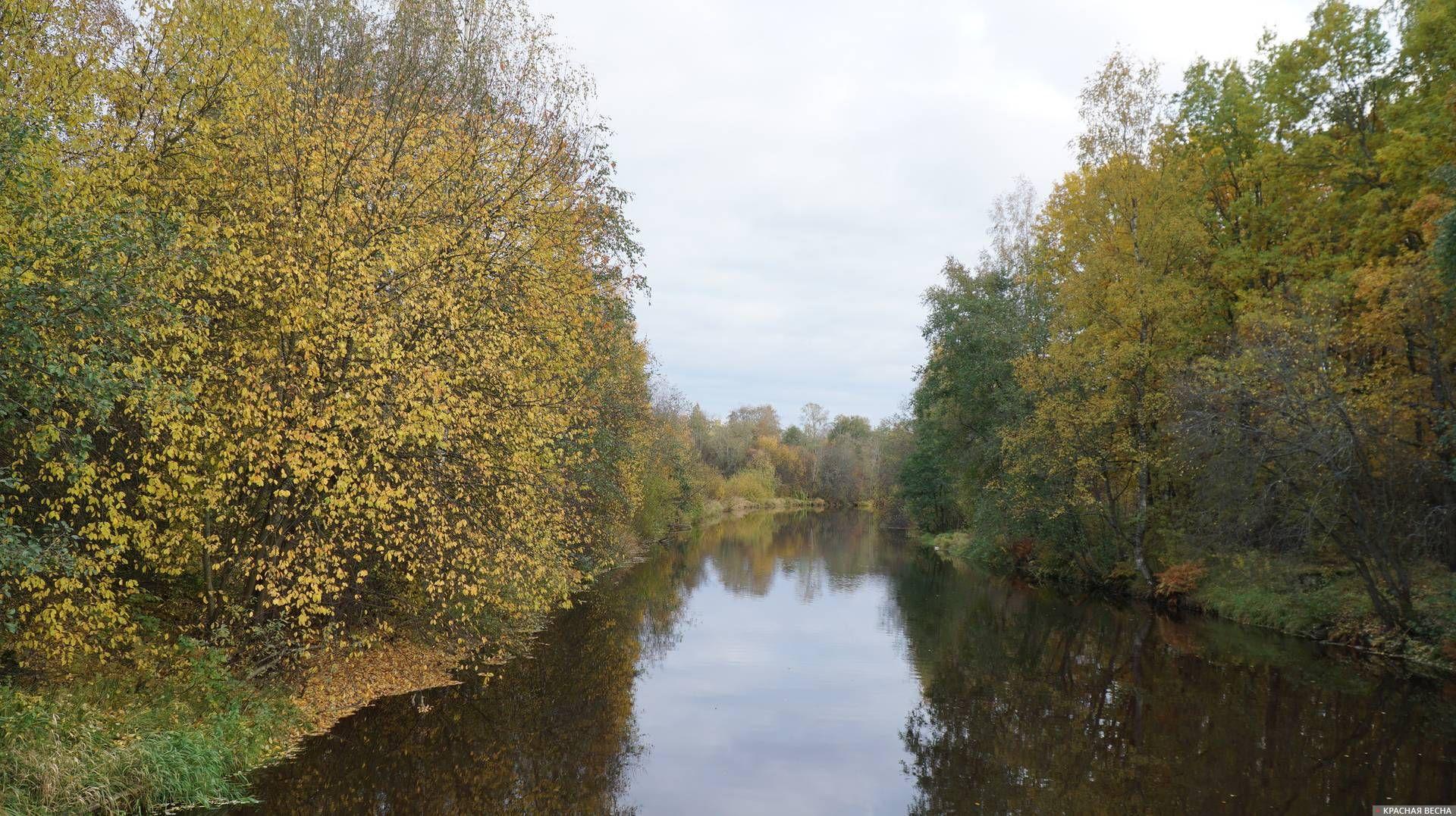 Река Сестра в Белоострове, бывшая советско-финляндская граница. 06.10.2019