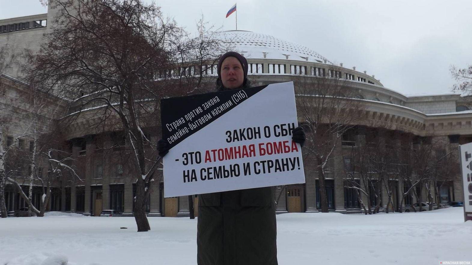 Пикет против закона о семейно-бытовом насилии в Новосибирске