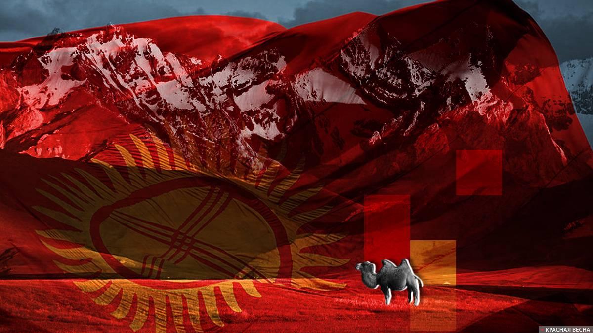 В Киргизии принята Национальная программа развития до 2026 года