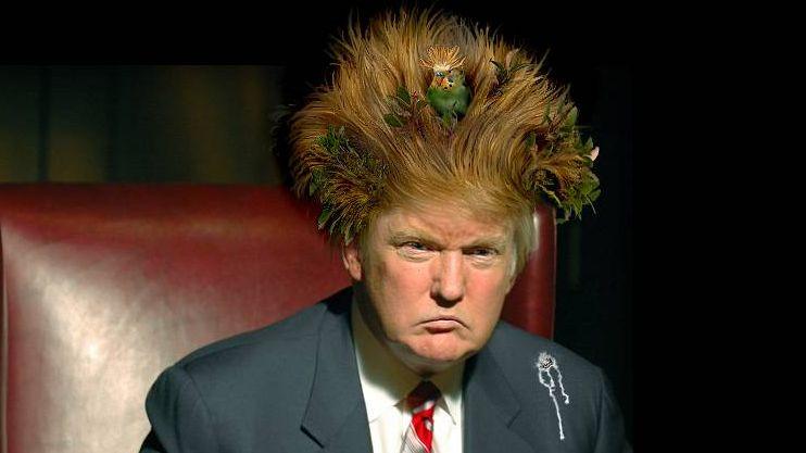 Что у Трампа в голове