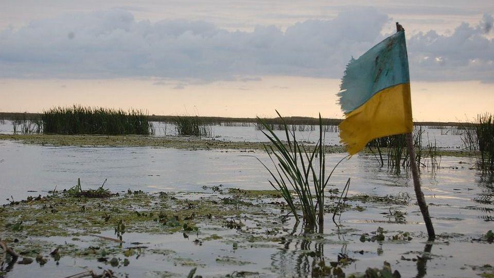 Украина в болоте