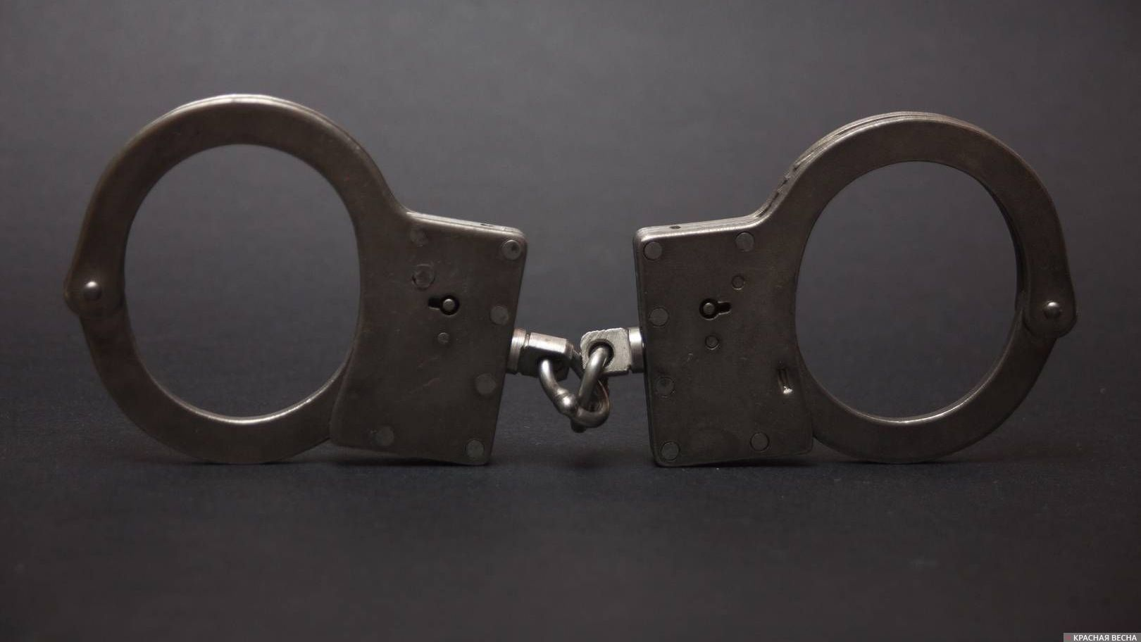 ВПетербурге суд арестовал все имущество прежнего вице-губернатора Оганесяна, подозреваемого вмошенничестве