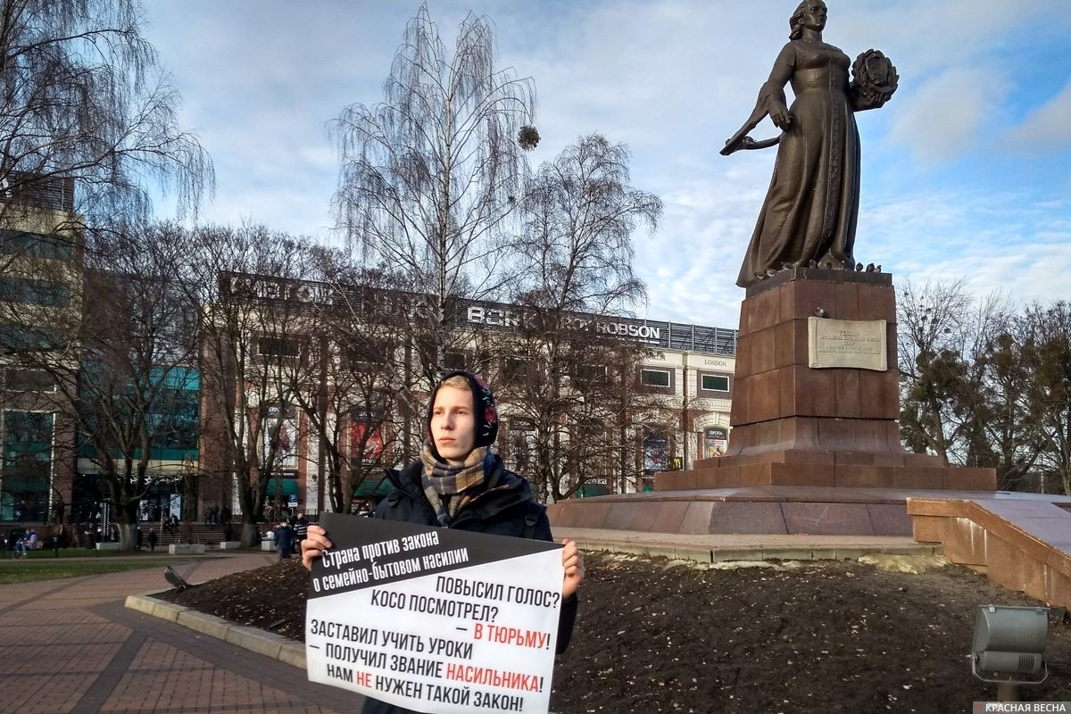 Калининград. Пикет против закона о семейно-бытовом насилии