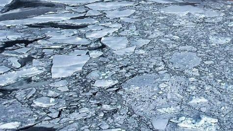 Семейная пара рыбаков застряла надрейфующей льдине вмагаданской бухте