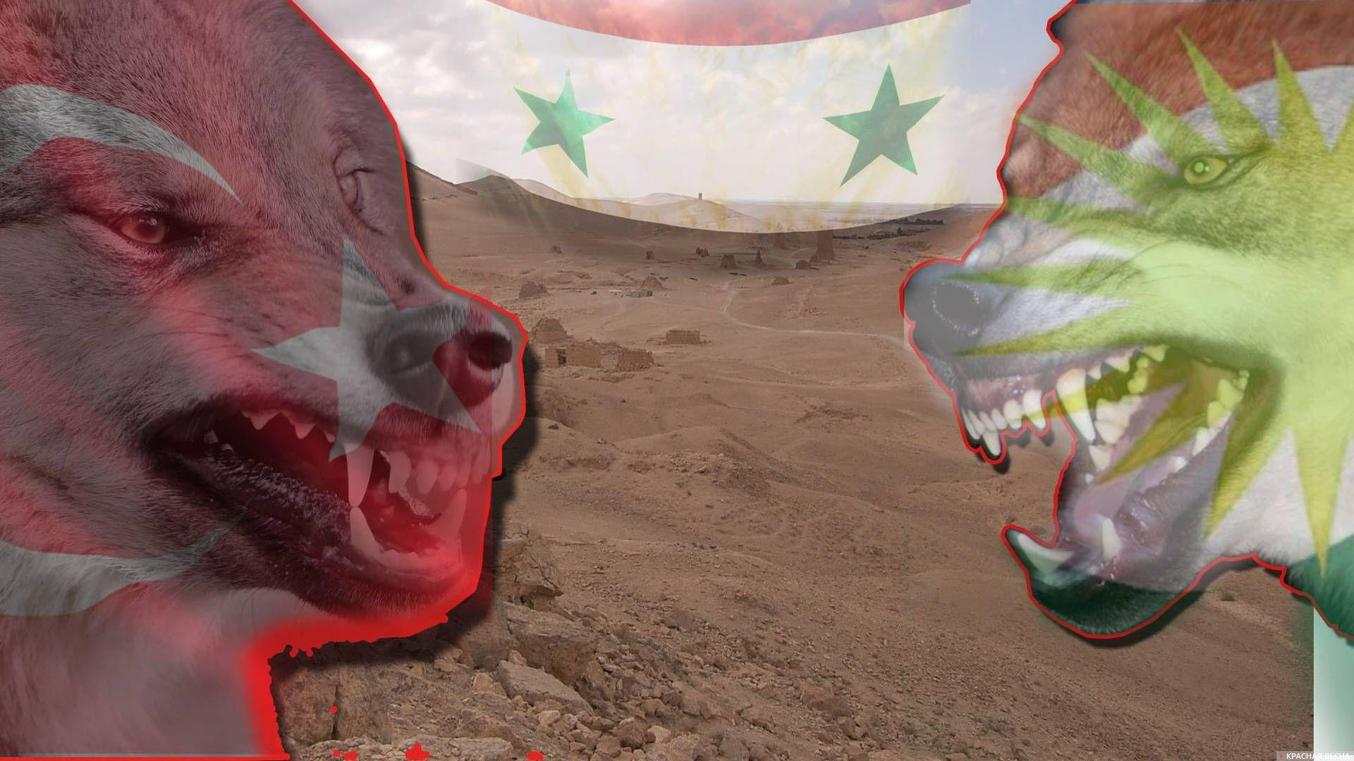Сирия. Конфликт Турции и курдов