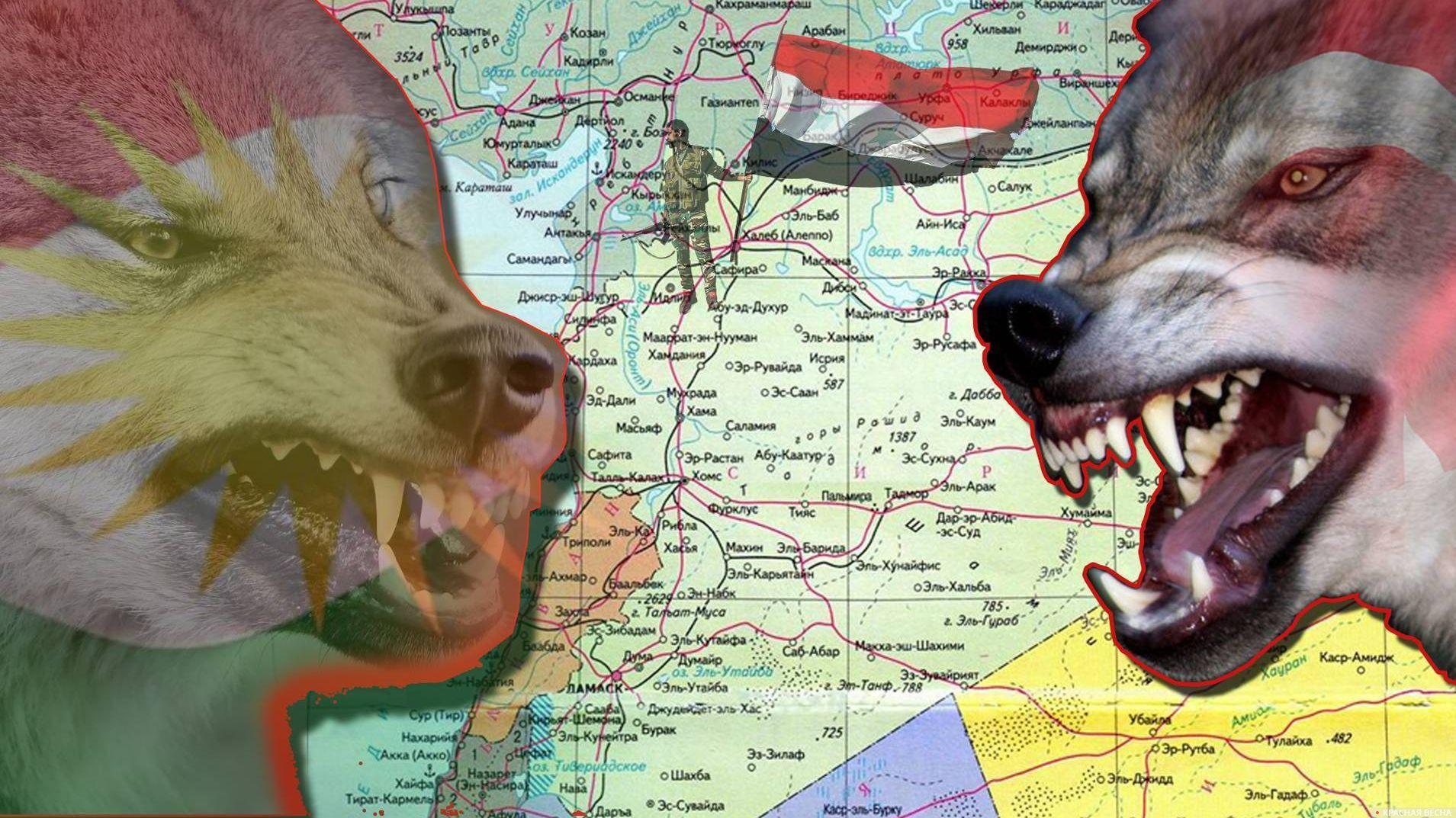 Война Турции и Курдов