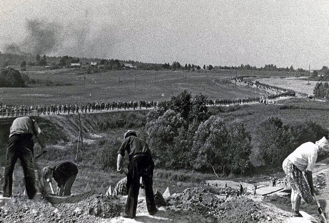 Ленинградцы на строительстве Лужского рубежа. Лето 1941 г.