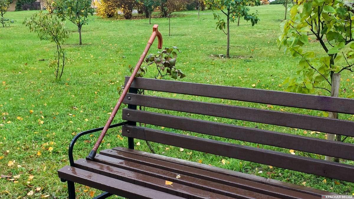 Трость на скамейке
