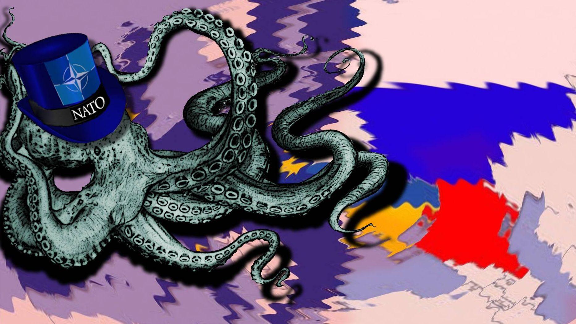 НАТО.  Комбакова Юлия (с) ИА Красная Весна