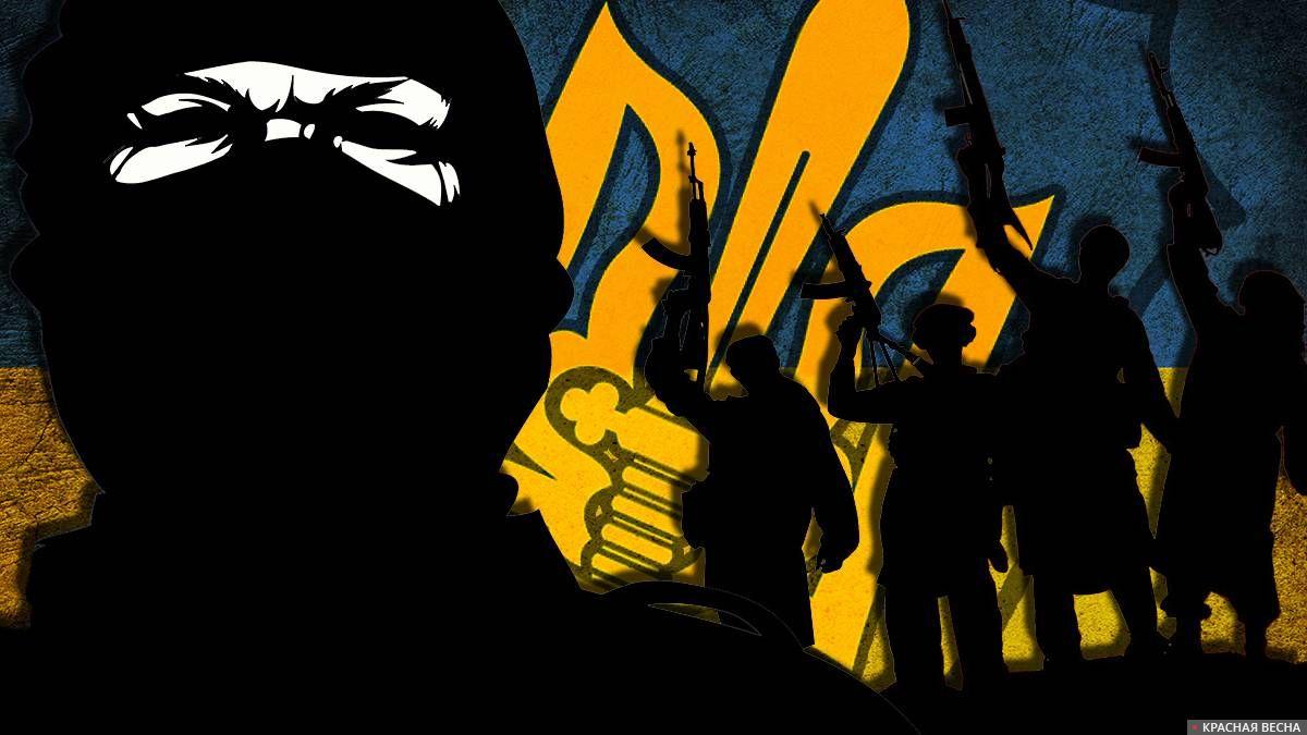 Украинский терроризм
