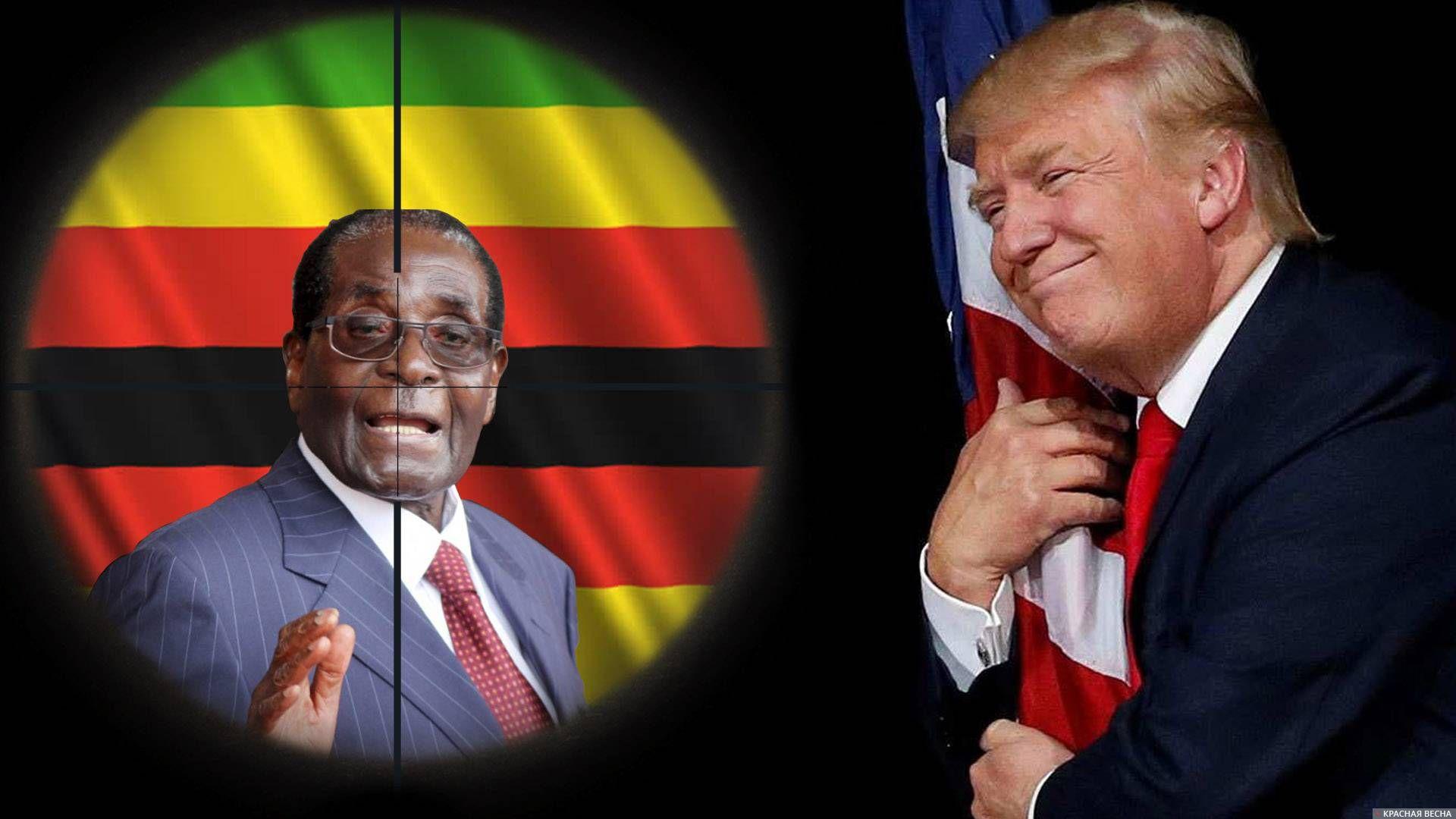 Конфликт в Зимбабве. Трамп и Мугабе