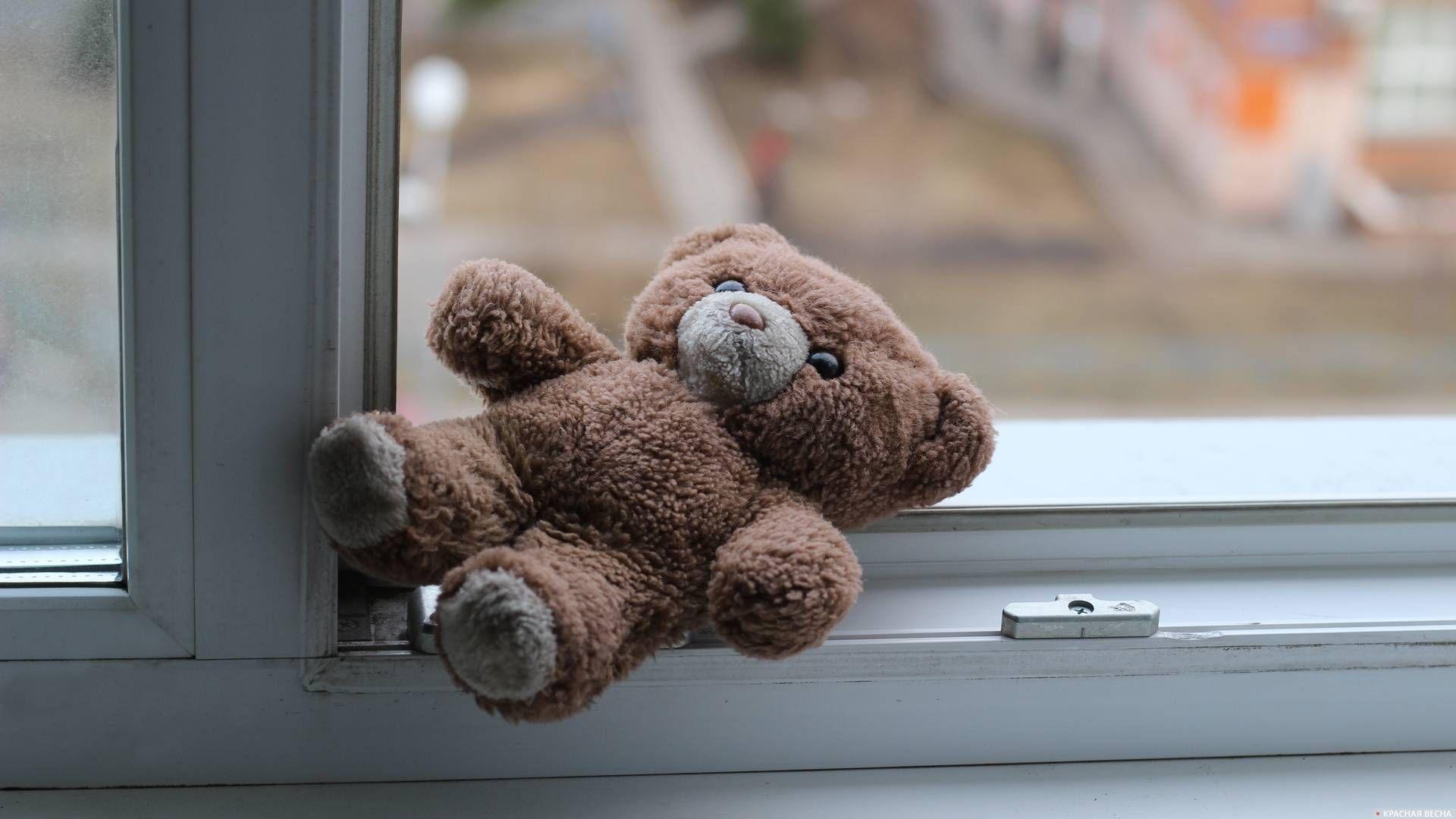 Игрушка у окна