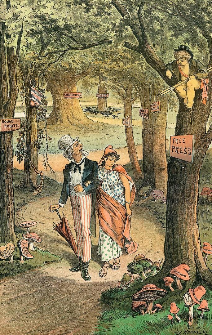 Джозеф Кепплер. Вредные наросты на территории свободы. 1885