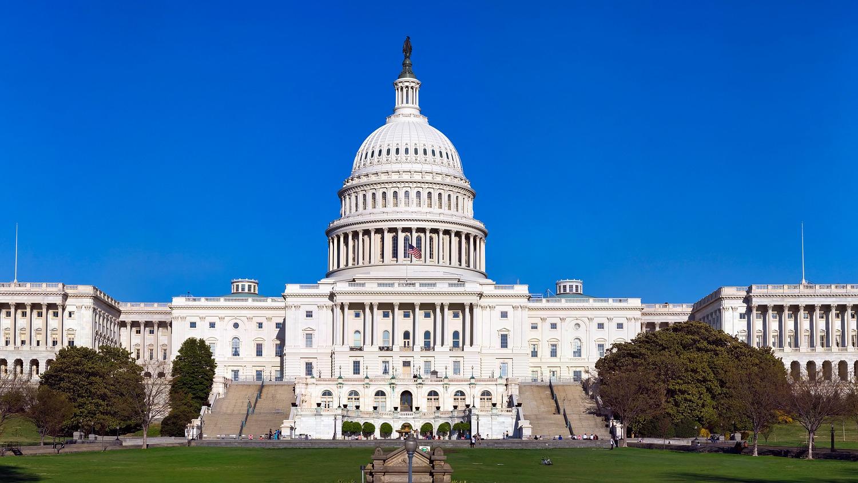 Палата представителей США поддержала демонтаж статуй в Капитолии | ИА  Красная Весна