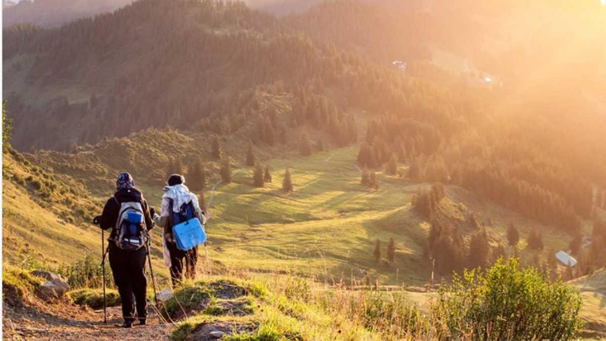 В Грузии будут развивать новое направление в туризме