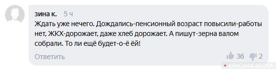 Скриншот ленты с комментариями © ИА Красная Весна