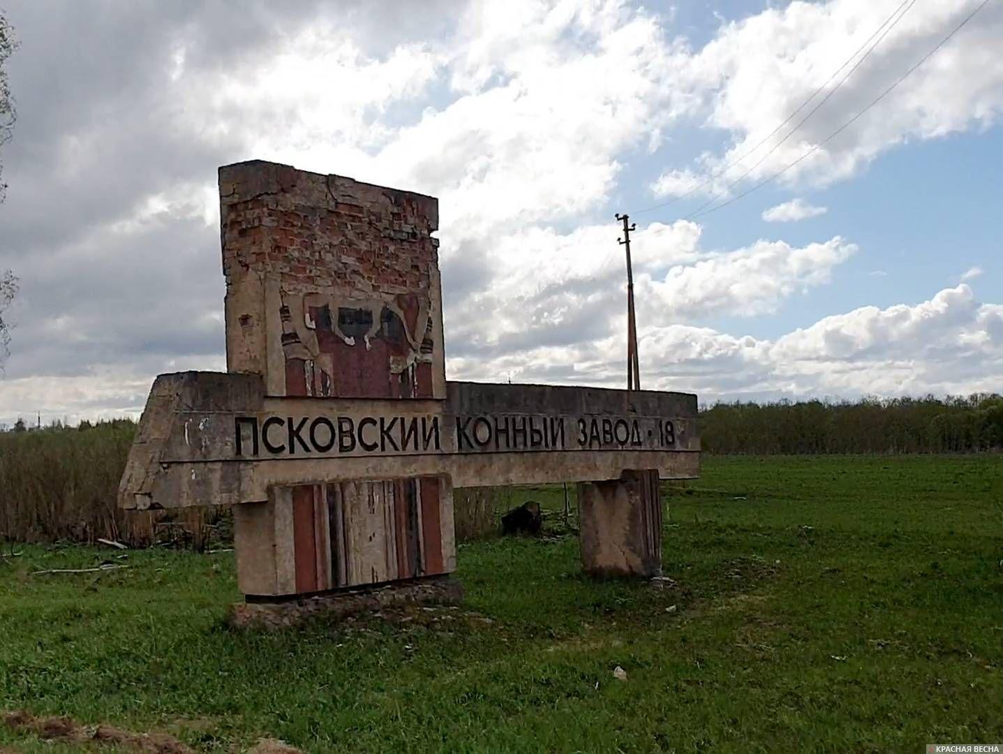 Псковский конезавод.