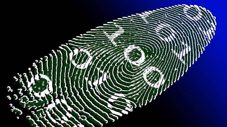 Цифровая идентичность