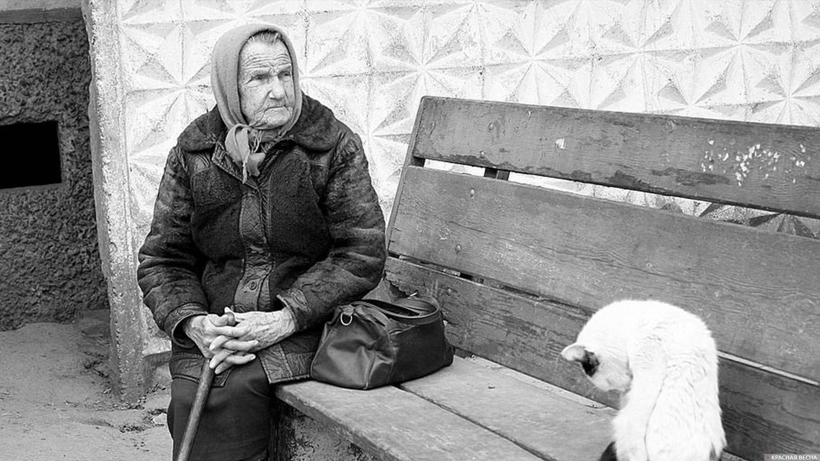 бабушка, кошка, бедность