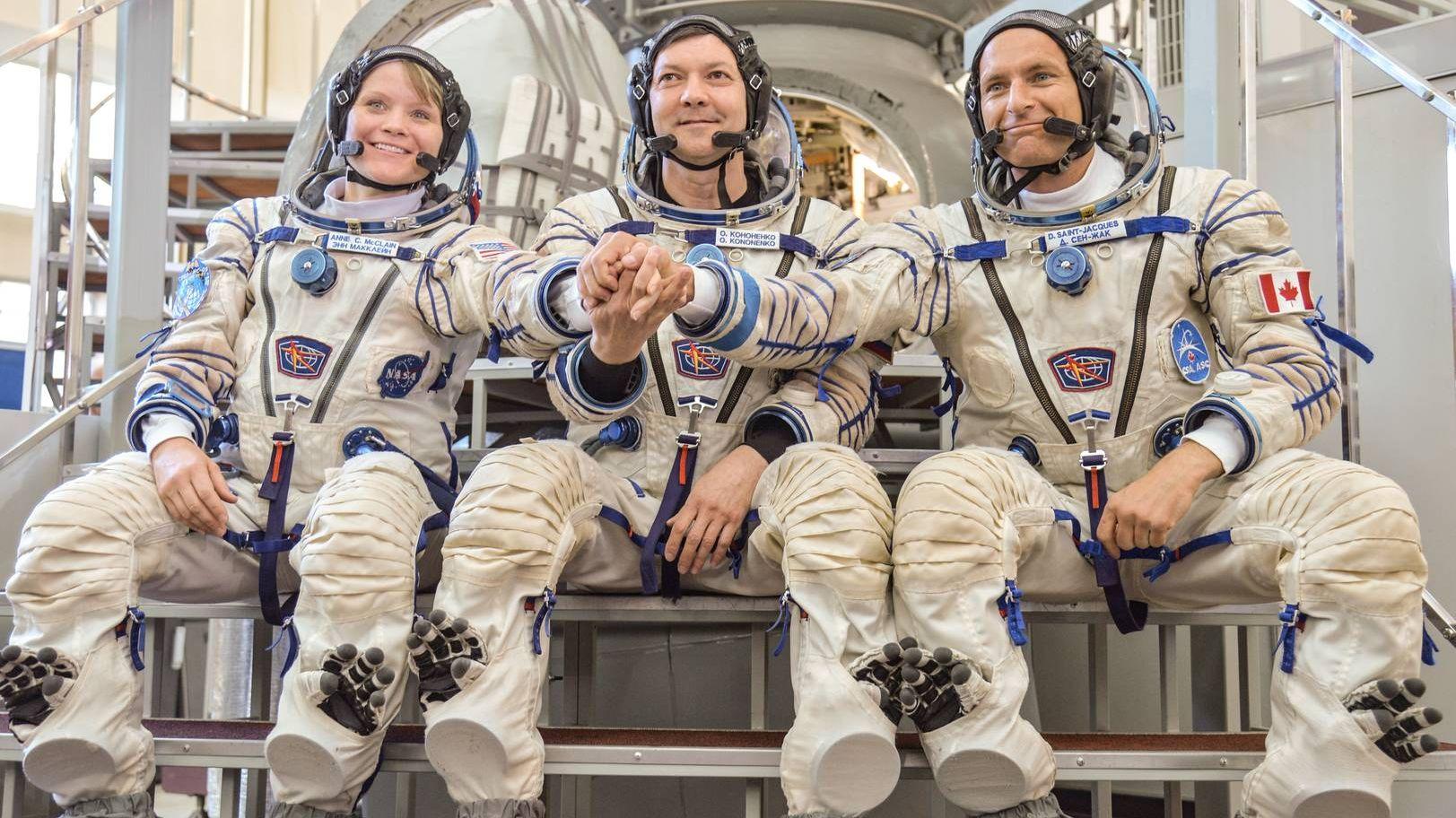 другие космонавты в картинках вид термических повреждений