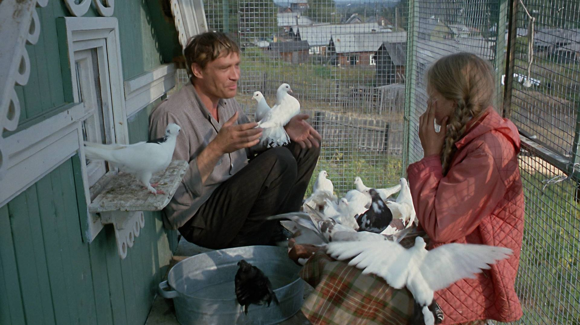 Цитата из к/ф «Любовь и голуби». реж. Владимир Меньшов. 1984.  СССР