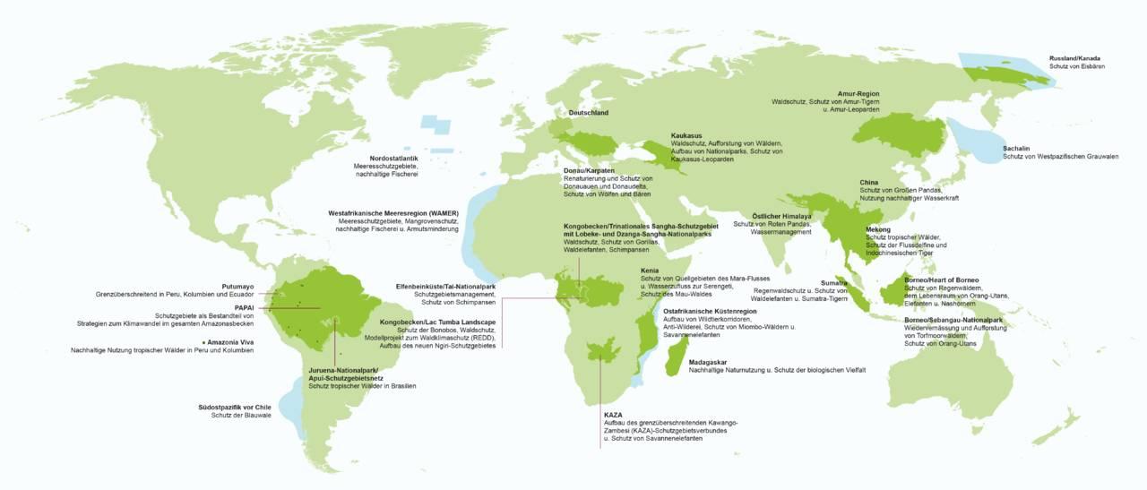 География деятельности WWF